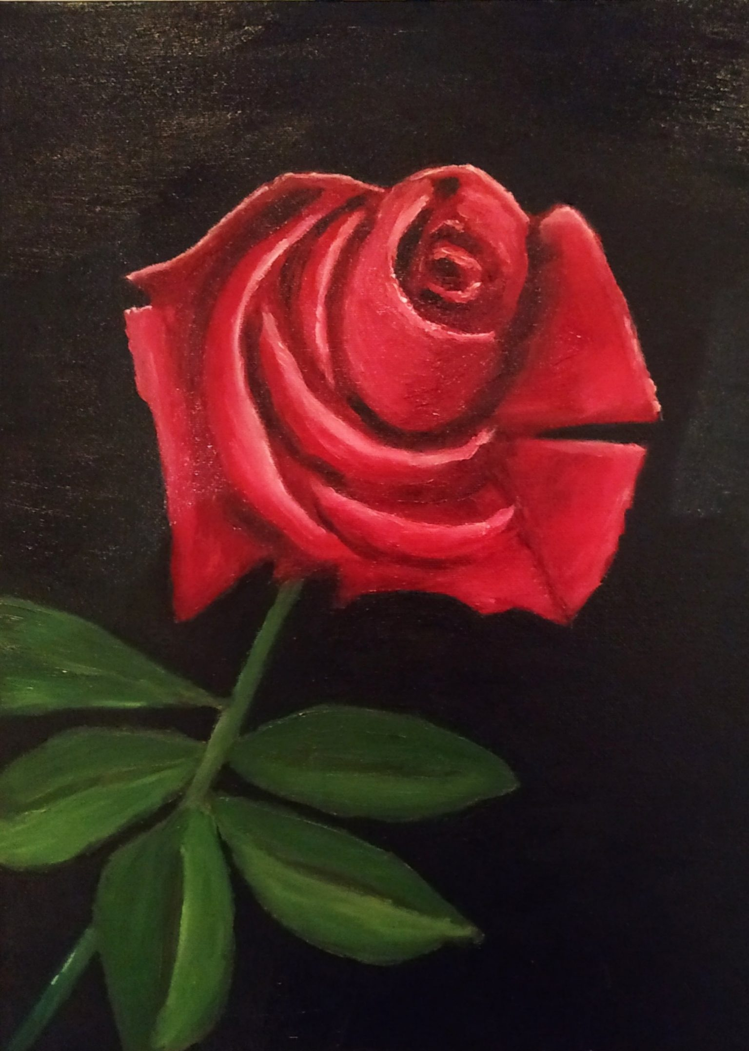 Still Life Painting of Single Red Rose