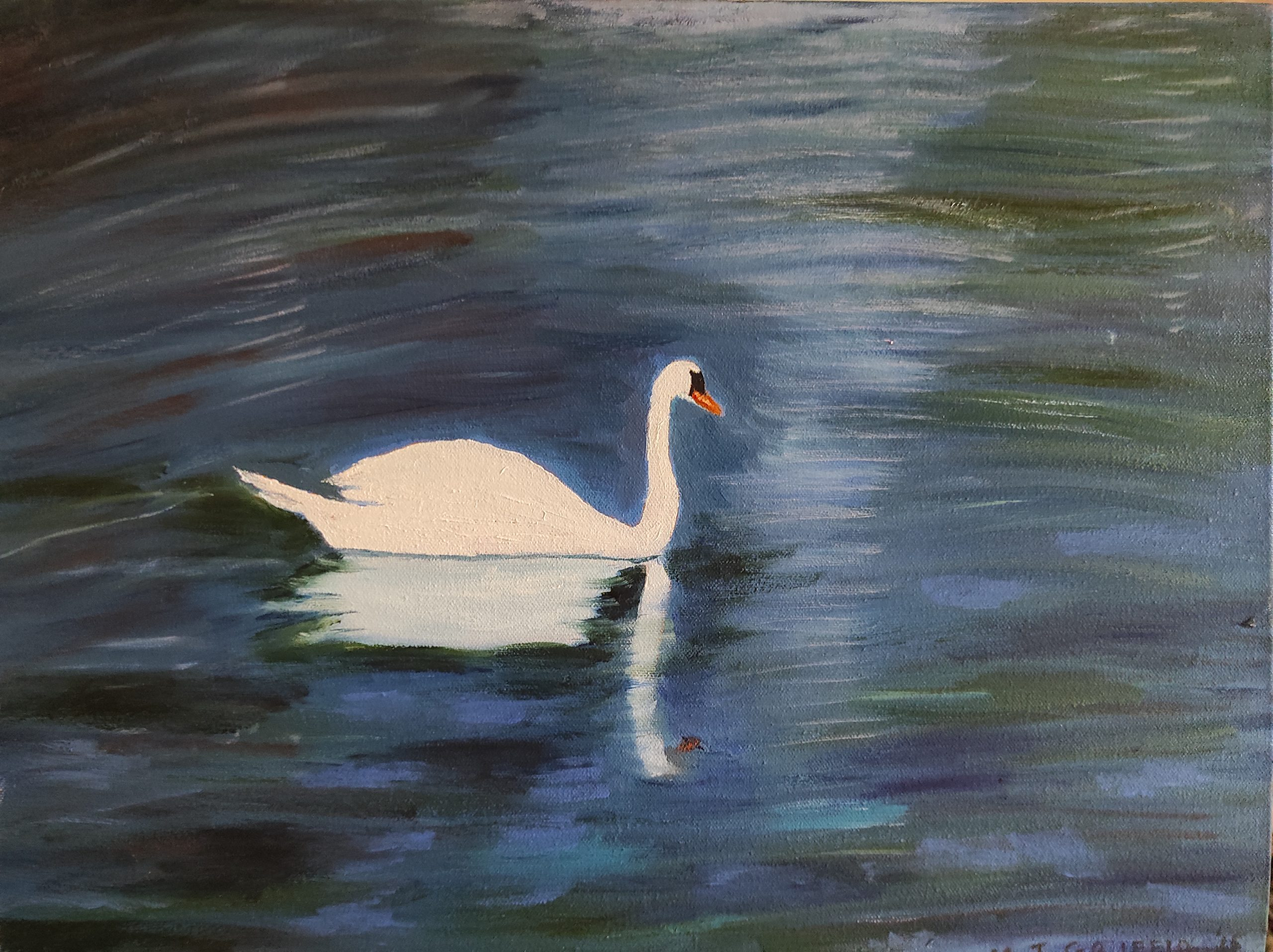 Oil Painting of Swan on Lake St Stephens Green Dublin for sale by local artist